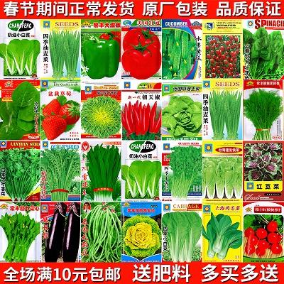 四季播阳台农家田园易种蔬菜种子